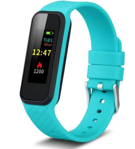 Inchor Wristfit HR2